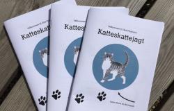 Katteskattejagt i Brogade